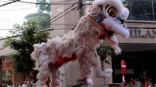 Dangerous Lion Dragon Dance - Lunar New Year - Ho Chi Minh City - Hai Tran Company Tet