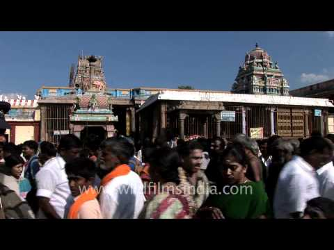 Devotees at the Palani hill temple