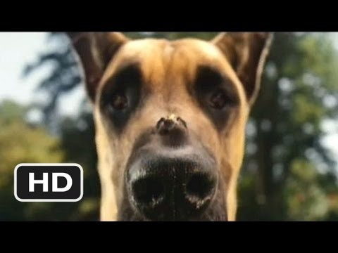 Marmaduke is listed (or ranked) 36 on the list The Best Live Action Animal Movies for Kids
