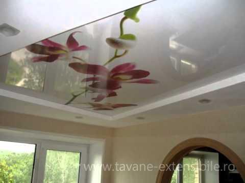 Idei de renovare apartament, renovare bucatarie idei casa renovare bai, tavane extensibile, living.