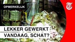 Blunderende magazijnmedewerker opnieuw viral