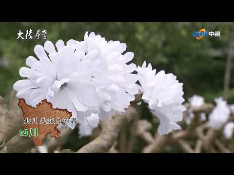 台灣-大陸尋奇-EP 175965-五一二蛻變曲(1)