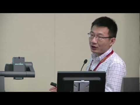 Lei Zhang - Mapping Online Entertainment: Interplay of Politics, Economy and Culture