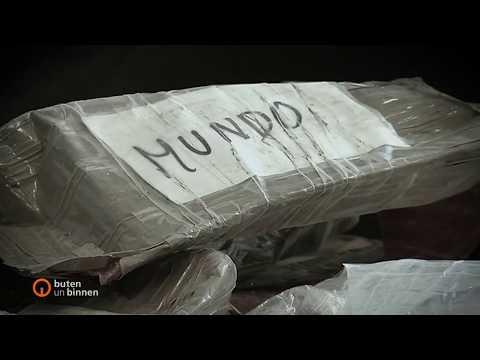 Kokain-Schmuggel in Bremerhaven: Lokalpolitiker unter Verdacht