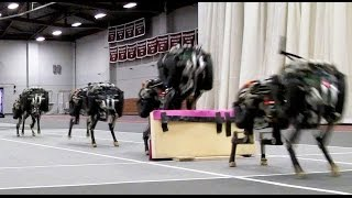 The first four-legged robot to run and jump over obstacles autonomously