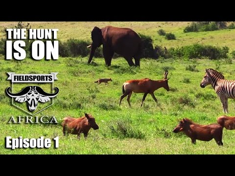 The Hunt Is On - Fieldsports Africa, episode 1