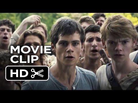 The Maze Runner Movie CLIP - Good Job (2014) - Dylan O'Brien Movie HD