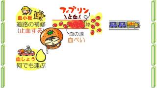 生物4章オマケ3話「血液とホルモン」byWEB玉塾