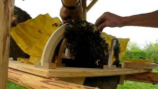 Sun Hive (Haengekorb) - opening a young bee colony