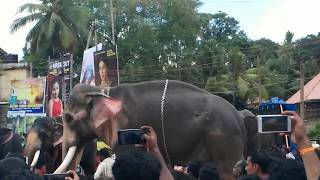 Thechikottukavu ramachandran announcement  by SAILESH VAIKOM, mass entry @ mukhathala Aanayoottu