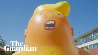 Trump Baby blimp prepares for takeoff: 'fragile, like the president's ego':