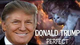 Donald Trump Singing Perfect by Ed Sheeran (Official Cover Music Video)