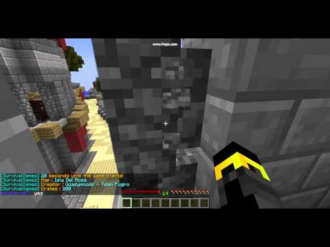 minecraft hunger games in the hive server the ip is