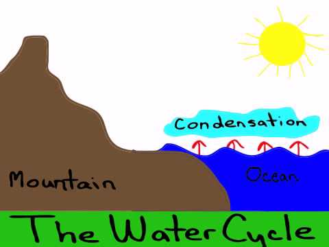 Water Cycle created on iPad with DoInk Vector Animation App