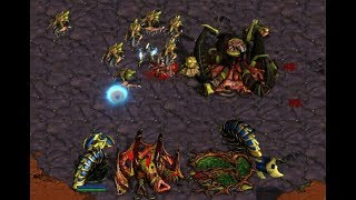 EPIC - AKARAKA (Z) v SkilletMaster (P) on Colosseum 2 - StarCraft  - Brood War REMASTERED