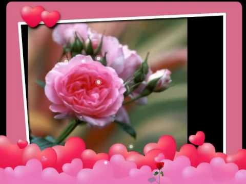 Bheegi Si Bhaagi Si (FULL SONG AUDIO)  Rajneeti Movie Raajneeti...