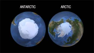 Warum die Arktis schmilzt, während die Antarktis vereist