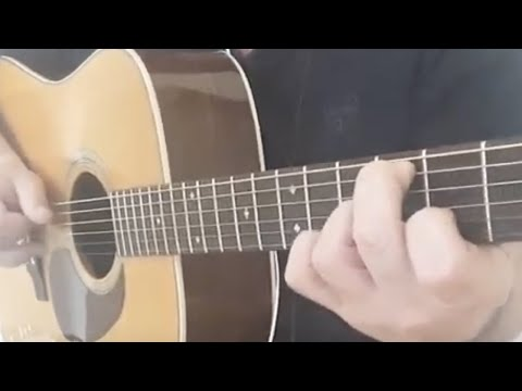 Pat Metheny - Always and Forever - Acoustic Guitar Cover  Fingerstyle