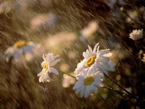 RHTDM- love is in the rain.wmv