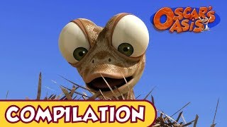 Oscar's Oasis - APRIL COMPILATION [ 25 MINUTES ]
