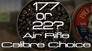 .22 or .177? Which air gun caliber do I need?