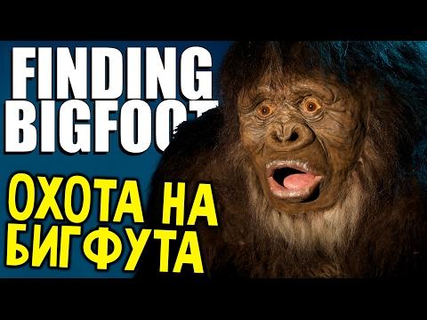что если не ловить бигфута в finding bigfoot