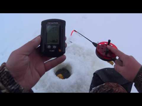 ловля сома с помощью эхолота видео