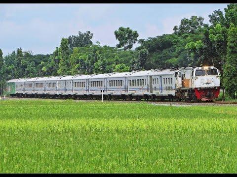 Hunting Kereta Api Awal Tahun 2017: Gajayana Bawa Kawis Nusantara #1