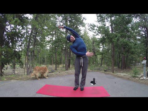 25 Min Of Stretching Exercises W/ Sean Vigue - HASfit Yoga Stretches - Flexibility Exercises Routine