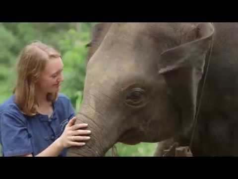 National Geographic Student Expeditions- Thailand Community Service