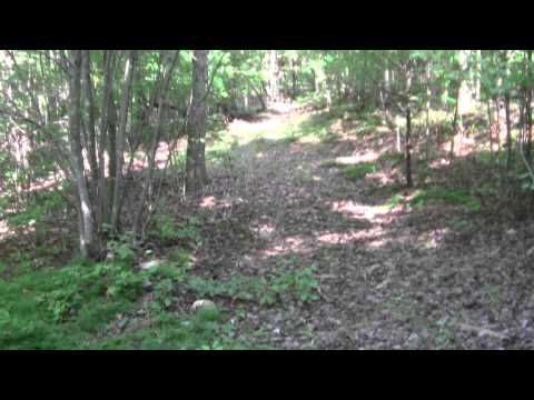Land For Sale By Owner 50+ Acres Hs4  Franklin Co  Va video