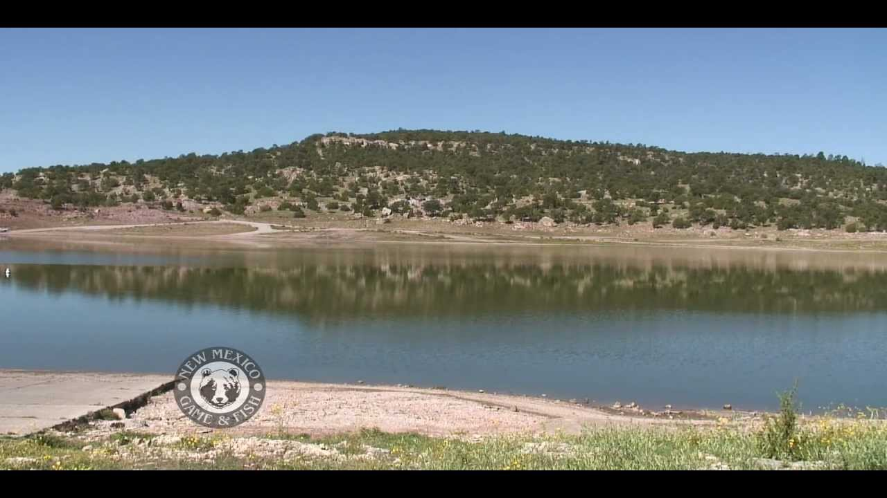 Tiger muskies at bluewater lake state park youtube for New mexico fishing license