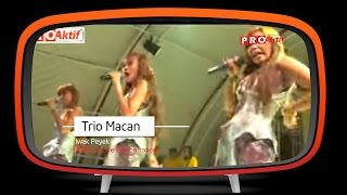 Trio Macan Iwak Peyek Official Karaoke Audio
