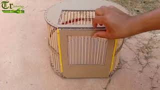 TR Technology  Bird Trap technology make from Cardboard 2019   Amazing bird trap