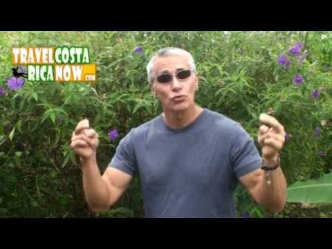 Costa Rica Perpetual Tourist UPDATE 2013 New Immigration Laws
