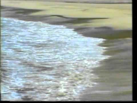 Film:yaraana Song:chookar Mere Man Ko...by..playbacksinger Tushartrivedi,pune.mob.09823166957 video