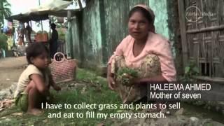 Rohingya song 2013
