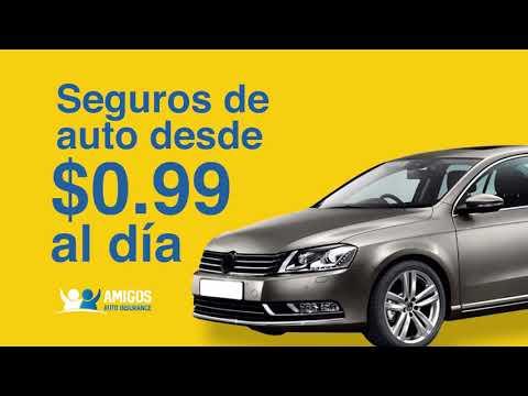 Amigos Auto Insurance