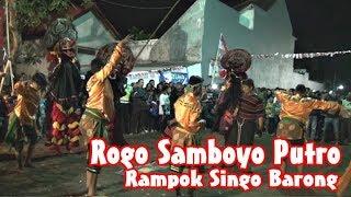 download lagu Rogo Samboyo Putro - Tari Rampok Singo Barong Di gratis