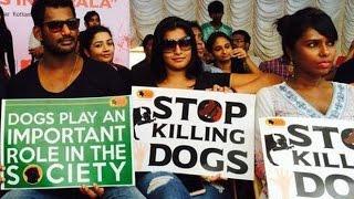 Vishal angers Malayalis for Opposing Dog Killing