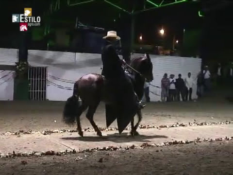 Festival Equino Ubaque 2014