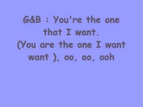 you re the one i want lyrics