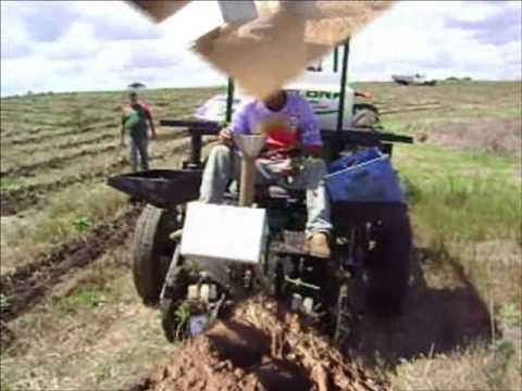 Plantadeira de Mudas Florestais Mecanizada