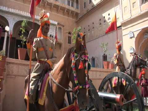 Marwari Horse Dundlod video