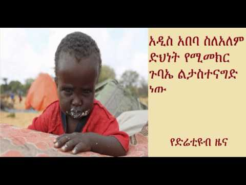DireTube News - Ethiopia capital Addis Ababa to host summit on global poverty