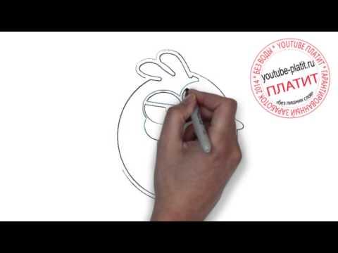 Смотреть онлайн angry birds  Как нарисовать angry birds поэтапно карандашом