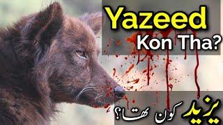 Download Hafiz Umar Siddique Munazir AHLEHADEES on YAZEED bin muavia EXPOSED for firqa Manhaj Ahle HADEETH 3Gp Mp4