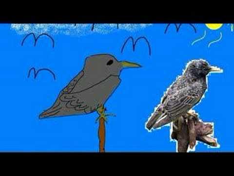Roben Og Knud - Darwins Sang