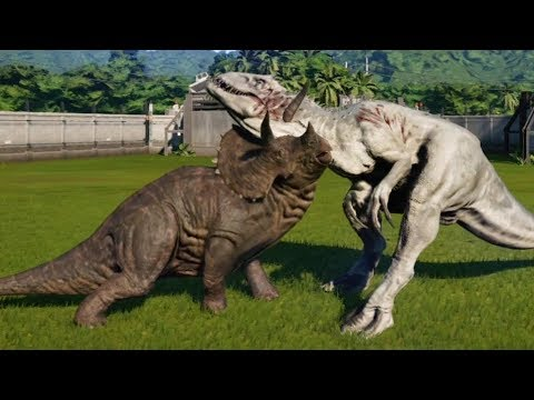 Jurassic World Evolution - TRICERATOPS (MAX ATTACK LEVEL) vs INDOMINUS REX - Gameplay HD