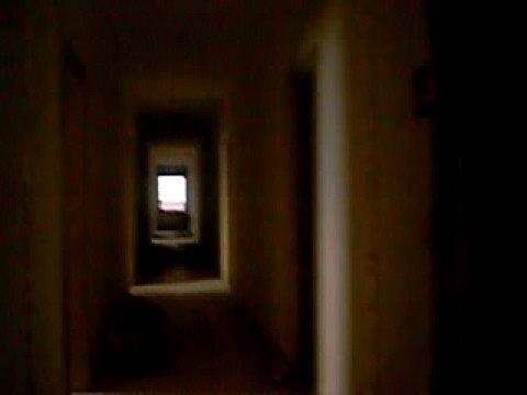 hotel viena, miramar, desde adentro